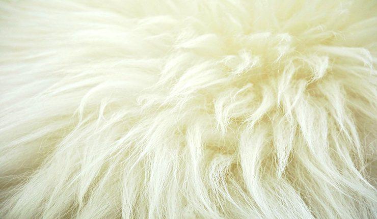 Стирка ковра из овчины
